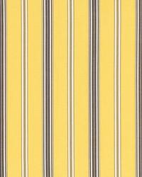 Schumacher Fabric Coco Stripe Yellow Fabric