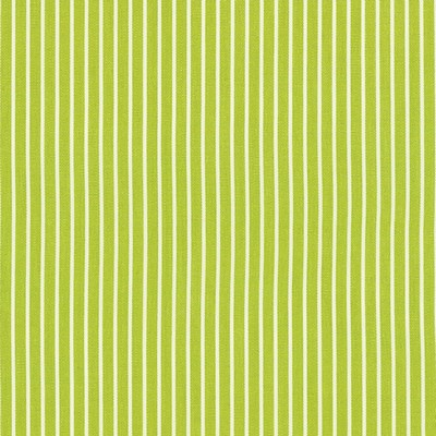Schumacher Fabric EDIE STRIPE GREEN Search Results