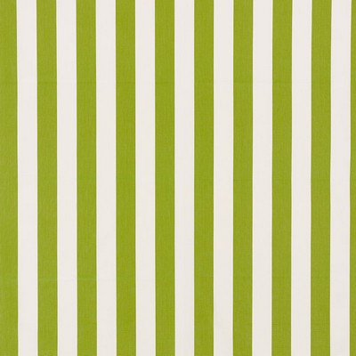 Schumacher Fabric ANDY STRIPE GREEN Search Results