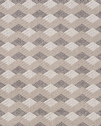 Schumacher Fabric Euchtman Earth Fabric