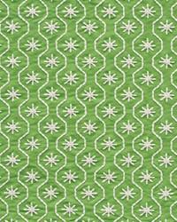 Schumacher Fabric Gigi Embroidery Green Fabric