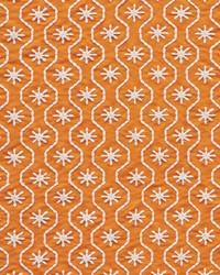 Schumacher Fabric Gigi Embroidery Orange Fabric