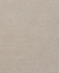 Schumacher Fabric Stingray Zinc Fabric