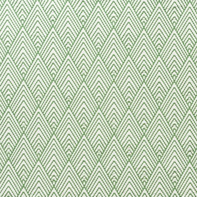 Schumacher Fabric AVILA EMBROIDERY GREEN Search Results