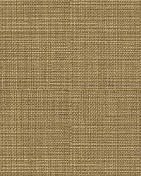 Kravet Tamil 31825 616 Caramel Fabric