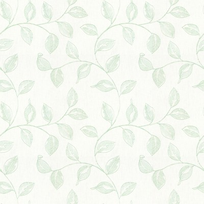 Kravet BAKLI MINT Search Results