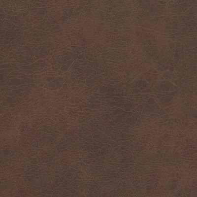 Kravet DIEGO CHOCOLATE Search Results