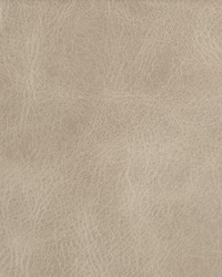Kravet Bern L-BERN FLAX Fabric