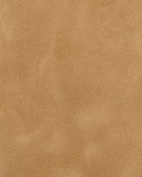 Kravet Bern L-BERN SCOTCH Fabric