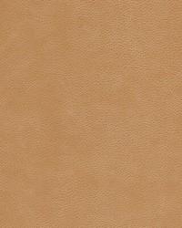 Kravet KRAVET DESIGN L-CIMARRON CHESTNUT Fabric