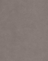 Kravet KRAVET DESIGN L-CIMARRON FAWN Fabric