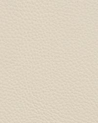 Kravet L-cowgirl Ivory Fabric
