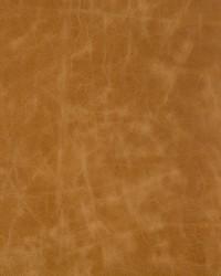 Kravet L-cuero ADOBE Fabric