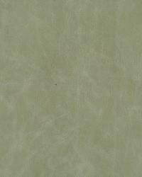 Kravet L-cuero EUCALYPTUS Fabric