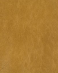 Kravet L-cuero FLAX Fabric