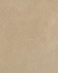 Kravet L-davos OATMEAL Fabric