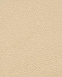 Kravet L-deluxe ICEBERG Linen Fabric