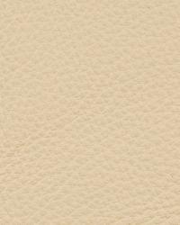 Kravet L-deluxe LINEN Fabric