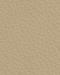 Kravet L-deluxe STONE Fabric