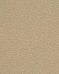 Kravet L-dreamer STONE Fabric