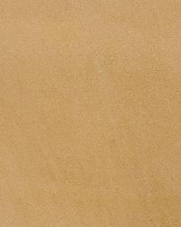 Kravet L-hasbrook Camel Fabric