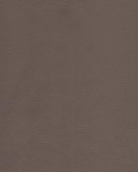 Kravet KRAVET DESIGN L-HOWDY TAUPE Fabric