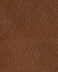 Kravet L-inn Coffee Fabric