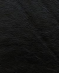 Kravet L-portofin Black Fabric