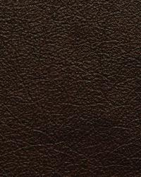 Kravet L-portofin Chocolate Fabric
