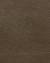Kravet L-portofin SAGE Fabric