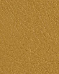Kravet L-rancho Gold Fabric