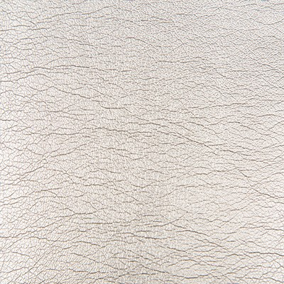 Kravet MAXIMO SILVER Search Results