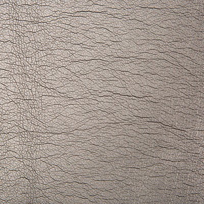 Kravet MAXIMO CARBON Search Results