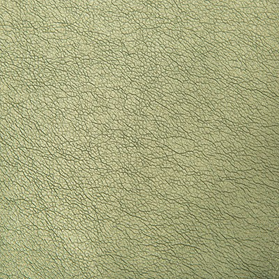 Kravet MAXIMO PERIDOT Search Results