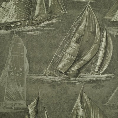 Ralph Lauren Wallpaper BOON ISLAND TOILE    SQUALL               Search Results