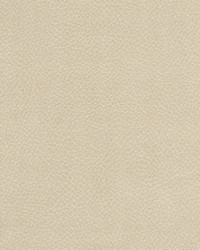 Magnolia Fabrics Degraw Beige Fabric