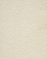 Magnolia Fabrics Baroo Beige Fabric