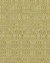 Robert Allen Haystack Bk Maize Fabric