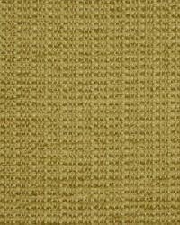 Robert Allen Drumcondra Aspen Fabric