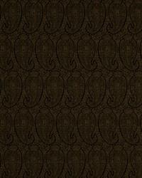 Robert Allen Eco Paisley Espresso Fabric
