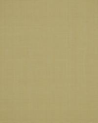 Robert Allen Zahara Birch Fabric