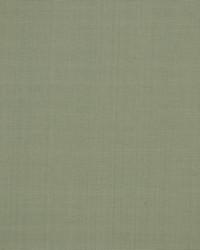 Robert Allen Zahara Powder Fabric