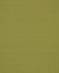 Robert Allen Zahara Leek Fabric