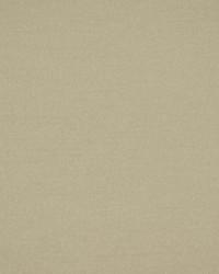 Robert Allen Tramore Ii Birch Fabric