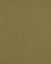 Robert Allen Tramore Ii Reed Fabric