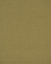 Robert Allen Tramore Ii Thyme Fabric