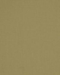 Robert Allen Living Simply Birch Fabric