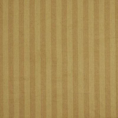 Robert Allen Paragon Stripe Latte Search Results
