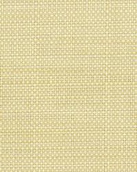 Robert Allen Scancelli Vanilla Fabric