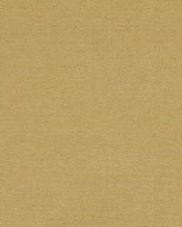 Robert Allen Tramore Ii Citrus Fabric